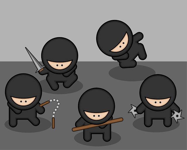 seo ninjas