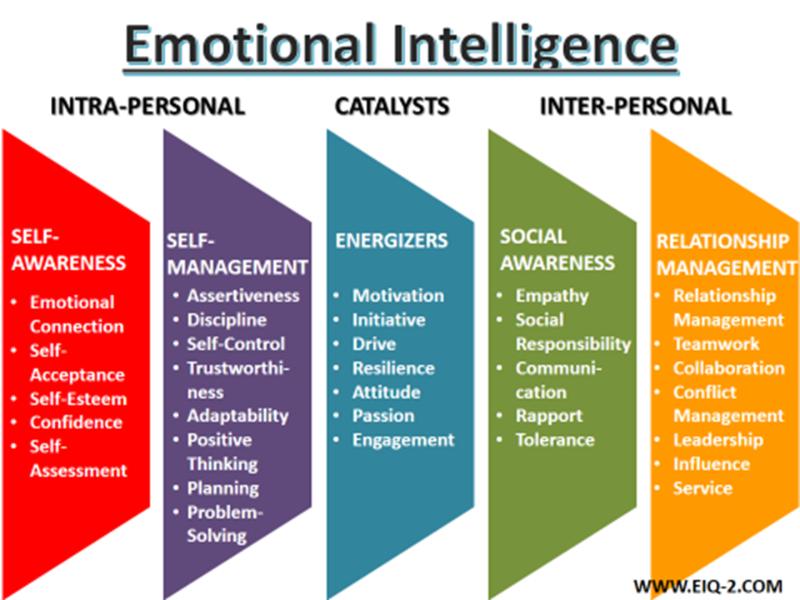 andreea baudici inteligenta emotionala